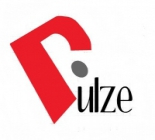 Pulze Trading