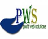 Profit Web  Solutions Pvt Ltd