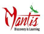 Mantis Simulation Games India