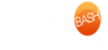 Cabo Bash VIP Services Specialists