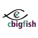 Cbigfish Esolutions