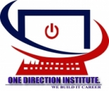 One Direction Institute
