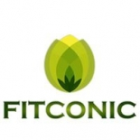 fit conic