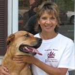 Pawz+For+Health+In+Home+dog+Training%2C+Severn%2C+Maryland image