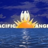 Pacific+Angel%2CLLC%2C+Union+City%2C+California image