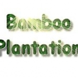 Bamboo+Plantation+Garden+Center%2C+Brookhaven%2C+Mississippi image