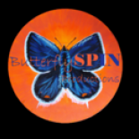 Butterfly+Spin+Productions+%2C+Jericho%2C+New+York image