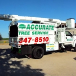 Accurate+Tree+Service+%26+Stump+Grinding+%2C+Middleton%2C+Massachusetts image