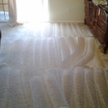 BW+Carpet+Cleaning%2C+Los+Angeles%2C+California image