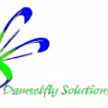 Damselfly+Solutions+Inc.%2C+Kitchener%2C+Ontario image