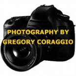 Photography+By+Gregory+Coraggio+%2C+Brick%2C+New+Jersey image