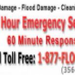 East+Coast+Cleaning+Emergency+Services%2C+Brooklyn%2C+New+York image