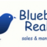 Bluebird+Realty%2C+Hampton%2C+Georgia image