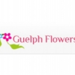 Guelph+Flowers%2C+Guelph%2C+Ontario image