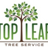 TOP+LEAF+TREE+SERVICE%2C+Mesa%2C+Arizona image