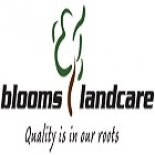 Blooms+Landcare%2C+Fort+Worth%2C+Texas image