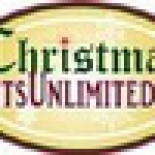 Christmas+Lights+Unlimited+-+San+Antonio+%2C+San+Antonio%2C+Texas image