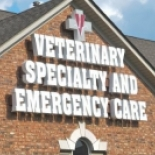 Veterinary+Specialty+%26+Emergency+Care%2C+Indianapolis%2C+Indiana image