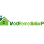 Mold+Remediation+Pros%2C+Pittsburgh%2C+Pennsylvania image
