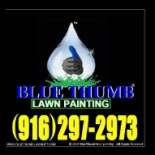 BLUE+THUMB+LAWN+SOLUTIONS%2C+Sacramento%2C+California image