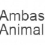 Ambassador+Animal+Hospital%2C+Scarborough%2C+Ontario image