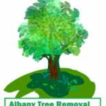 Albany+Tree+Removal%2C+Albany%2C+New+York image