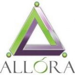 Allora+Consulting%2C+Raleigh%2C+North+Carolina image