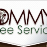 Tommy%27s+Tree+Service%2C+Austin%2C+Texas image