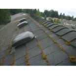 West+Coast+Roof+Cleaning%2C+Vancouver%2C+British+Columbia image