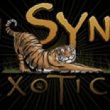 In-Sync+Exotics+Wildlife+Rescue+and+Educational+Center%2C+Wylie%2C+Texas image