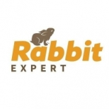 Rabbit+Expert%2C+New+York%2C+New+York image