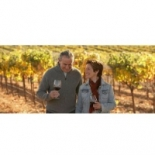 A+Wine+Country+Driver+For+You%2C+Santa+Rosa%2C+California image