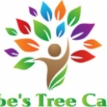 Abe%27s+Tree+Care%2C+Lakeland%2C+Florida image