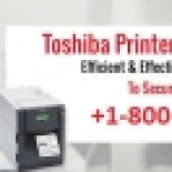 Fix+Toshiba+Printer+Errors+at+1-800-510-7358+at+Low+Costs%2C+New+York%2C+New+York image