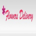 Same+Day+Flower+Delivery+Houston%2C+Houston%2C+Texas image