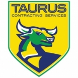 Taurus+Contracting+Services+LLC%2C+Kingsland%2C+Texas image