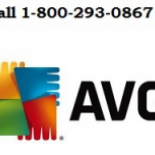 Online+Help+is+Available+for+AVG+Antivirus+Setup+Dial+1-800-293-0867%2C+Valley+Stream%2C+New+York image