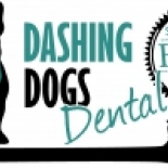 Dashing+Dogs+Dental%2C+Vancouver%2C+British+Columbia image