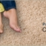 Perez+Carpet+Cleaning%2C+South+Plainfield%2C+New+Jersey image