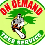 On+Demand+Tree+Service%2C+Saint+Petersburg%2C+Florida image