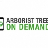 Arborist+Tree+Service+on+Demand%2C+Cheney%2C+Washington image