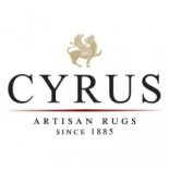 cyrus+artisan+rugs%2C+Minneapolis%2C+Minnesota image