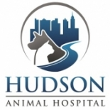 Hudson+Animal+Hospital%2C+New+York%2C+New+York image