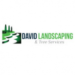 David+Landscaping+%26+Tree+Services%2C+Springfield%2C+Virginia image