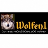 Wolfen1+Dog+Training%2C+Brookfield%2C+Connecticut image