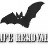 Wildlife+Removal+Pros%2C+Lexington%2C+Kentucky image
