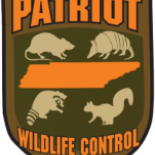 Patriot+Wildlife+Control%2C+Collierville%2C+Tennessee image