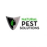Natural+Pest+Solutions%2C+Apache+Junction%2C+Arizona image