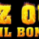 EZ+Out+Bail+Bonds%2C+Conroe%2C+Texas image