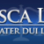 Musca+Law+%2C+Clearwater%2C+Florida photo icon
